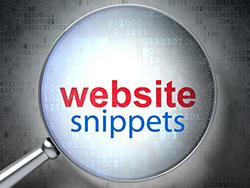 websnips