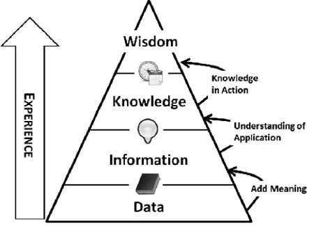 Wisdom/Experience Pyramid